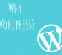 Small Business WordPress Websites | LBM Designs Brisbane